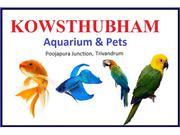 Aquarium in Trivandrum