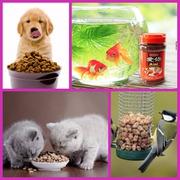 Natural Pet India | Pet Food Online